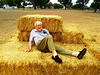Lazing in the hay