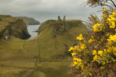 The Dunseverick Castle