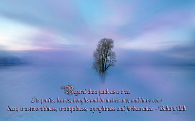 Regard Faith as a tree