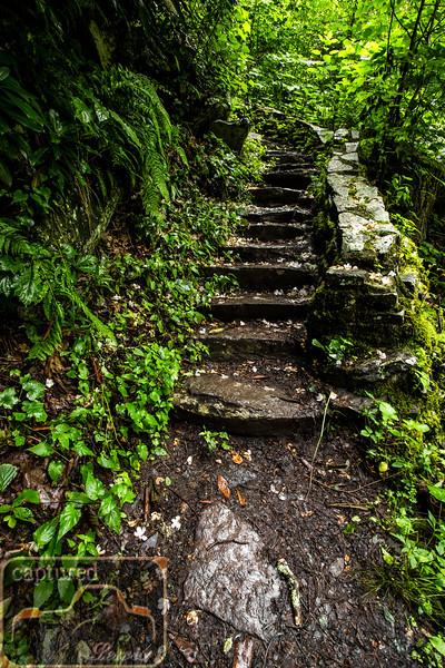 Cascade Falls Steps 2