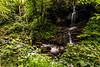 Cascade Falls Trail 7