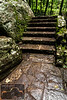 Cascade Falls Steps 3