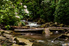 Cascade Falls Trail 5