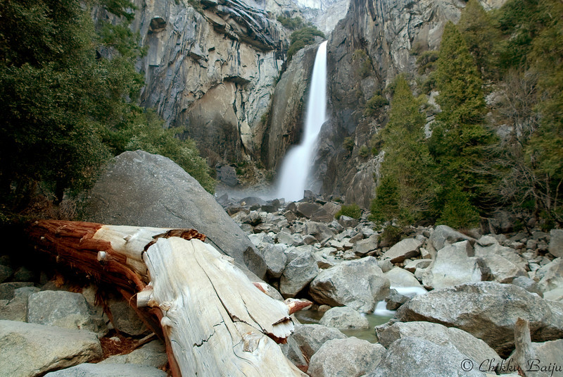 """Lower Yosemite Falls""<br /> <br /> The spring run-off had started and the water was flowing!"