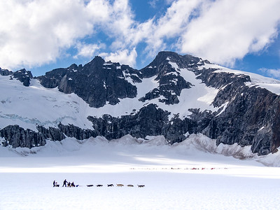 The Mendenhall Glacier - Dog-Sledding