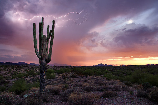 """Lightning sunset""<br /> <br /> Its very challenging to capture lightning during sunset, but somehow I managed to get this."
