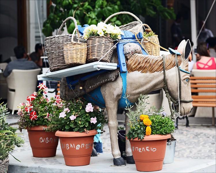 Donkey Statue on Main St.