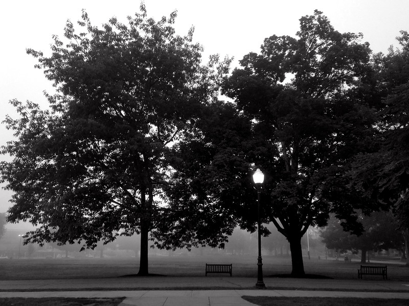 """""""Early Morning Solitude"""""""