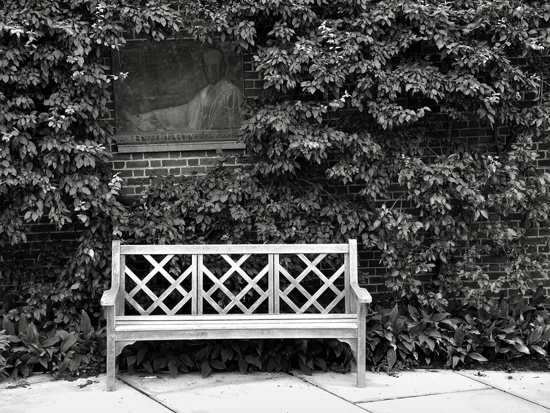 President's Bench - Dartmouth College, Hanover NH