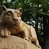Nittany Lion 2 - Respect