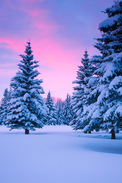 Winter Sunset in Grande Prairie, Alberta