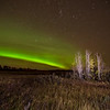 Northern Lights at Kleskun Hills, Alberta