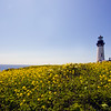 Yaquina Head Lighthouse (93 feet high, 192 feet above sea level). The tallest on Oregon coast, 3 miles North of Newport.