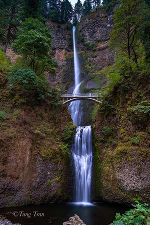 The landscape of Oregon (Various)