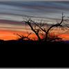 Sunset from Cedar Breaks Nat'l Monument