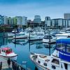 Tacoma Marina,WA
