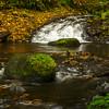Creek In Fall Colors