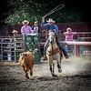 Cowboy in action