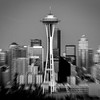 Shaked Seatlle Skyline