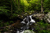 Anna Ruby Falls Trail 1