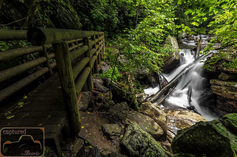 Cascade Falls Trail 3