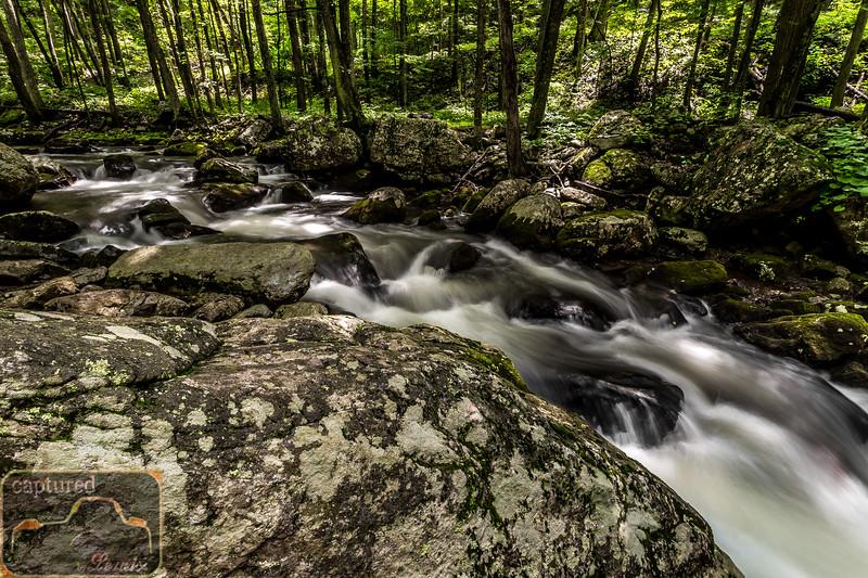 Cascade Falls Trail 4