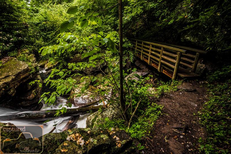 Cascade Falls Trail 8
