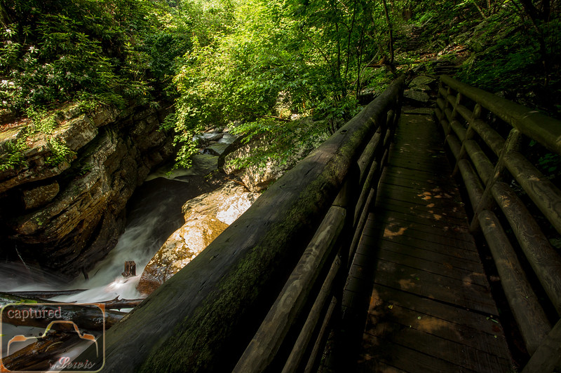 Cascade Falls Trail 9