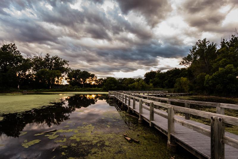 Heron Haven Wetland