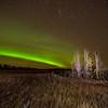 Northern Lights at Kleskun Hills, Alberta