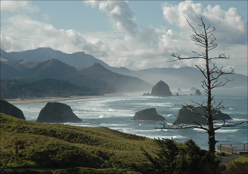Coastal View from Ecola S.P., Cannon Beach