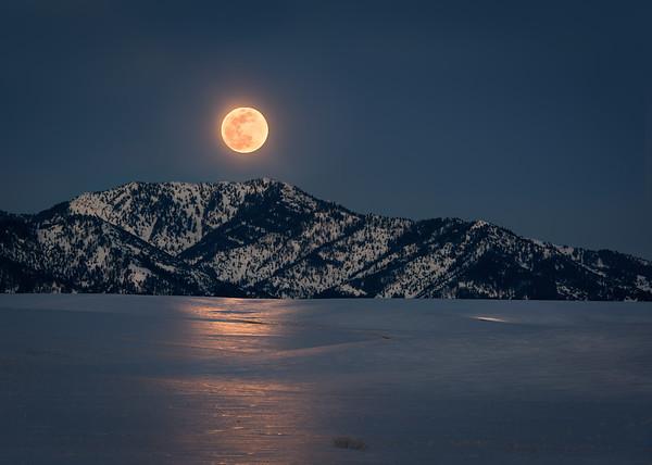Moon Light Glow