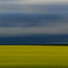 Canola Field at 180 mph in County of Grande Prairie, Alberta