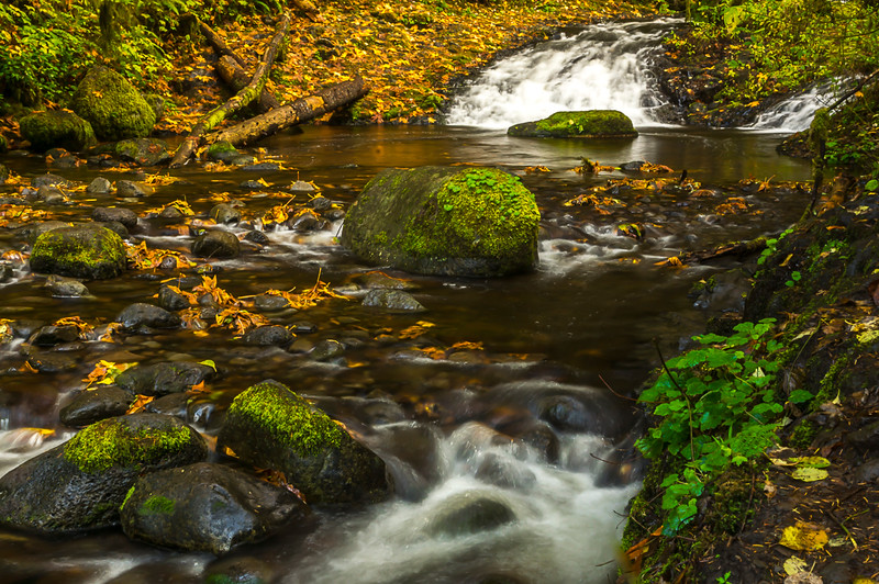 Upper Alwah Creek,Oregon