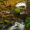 Upper Alwah Creek,Oregon
