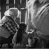 Milking Lesson