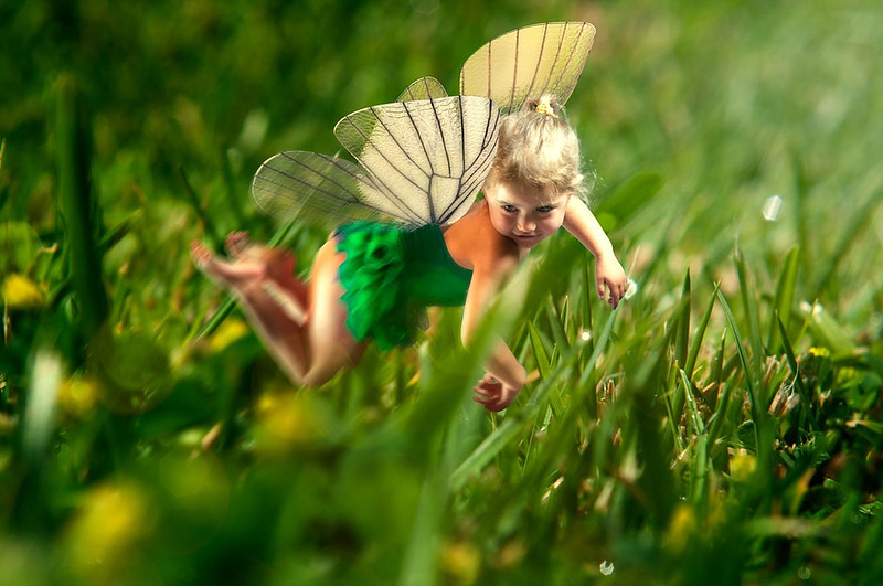 Fairy flying in Grass