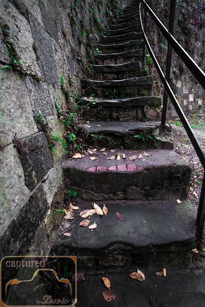 Savannah Historic Steps 10