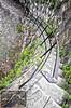 Savannah Historic Steps 4