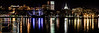 Savannah Night Panoramic