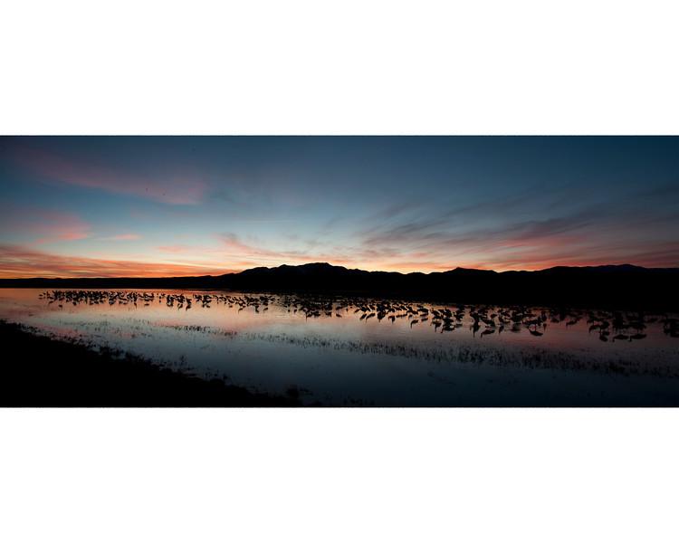 2012 Sunset at Bosque Del Apache, San Antonio, New Mexico