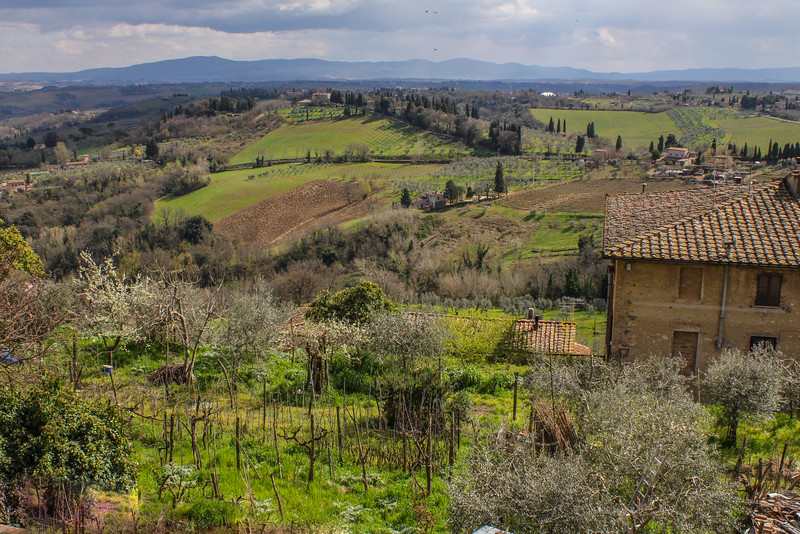 A Land of Plenty of Assisi