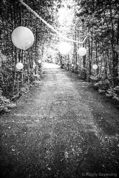 Down the lane