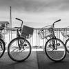 Favorite Passtime - Cycling