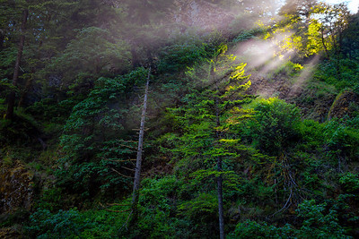 Beams of Sunrise Top of Multnomah Falls