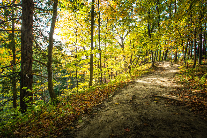 Autumn in Short Hills Provincial Park, St Catharines, Ontario