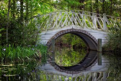 Iris Bridge