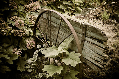 Garden Cart Jonesborough, TN