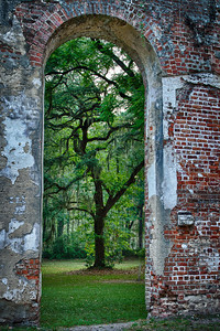 Oak Window