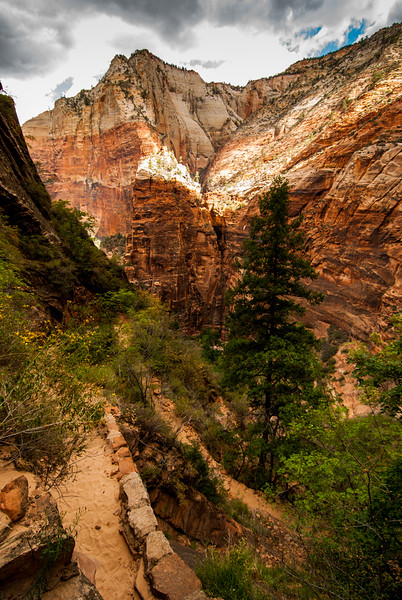 Zion National Park - East Rim Trail